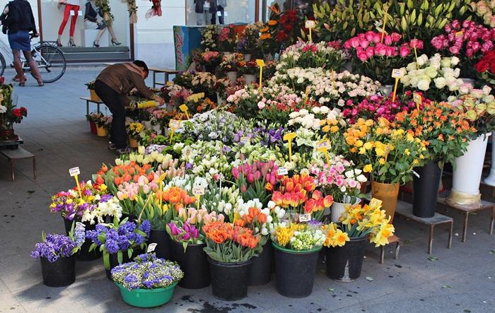 27 cvijeće Cvjetni trg