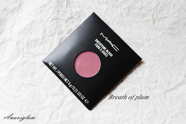 27 mac pro blush